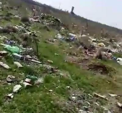 Опасно пасище за животни край град Левски