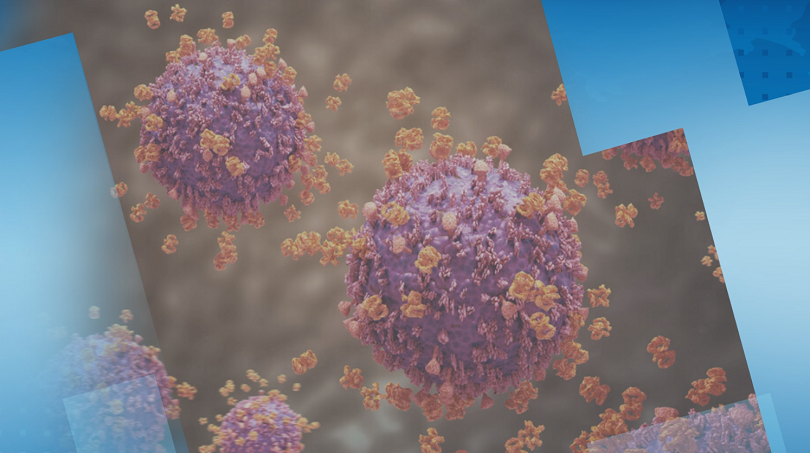 Българска компания от 4 години разработва микромолекула срещу коронавирус