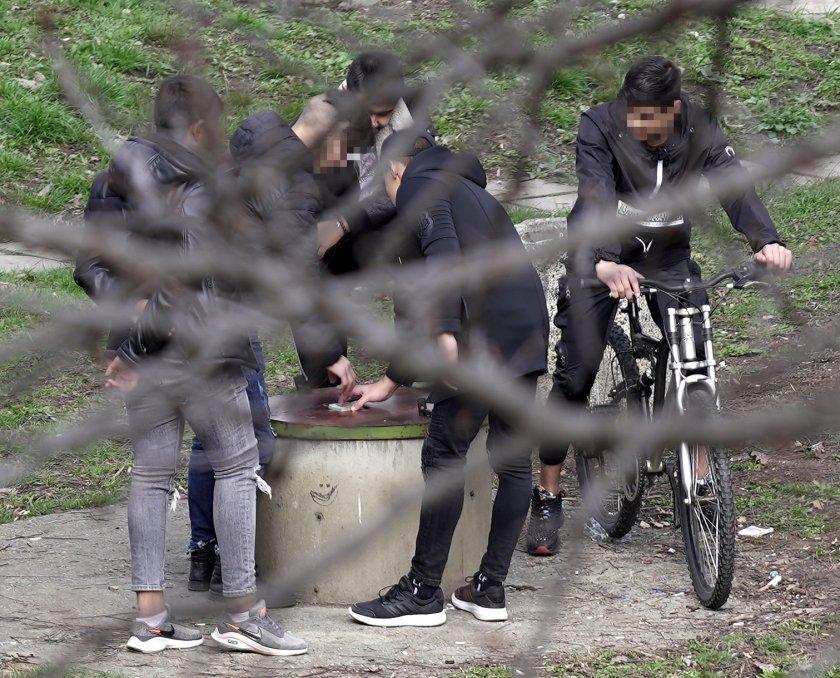 група младежи събира столична градинка въпреки забраните снимки
