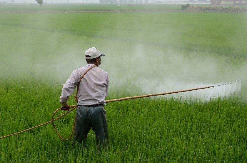 прие стратегия намаляване употребата пестициди