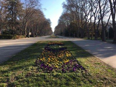Морската градина във Варна се събужда за нов живот (СНИМКИ)