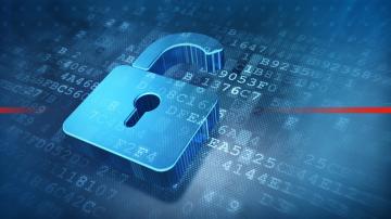 Как да се предпазим от киберзаплахи при дистанционна работа?