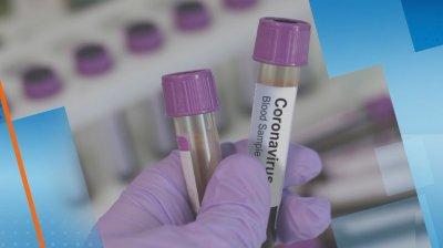 Починалата лекарка от Спешна помощ е имала положителен бърз тест за антитела