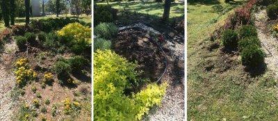Откраднаха цветя и храсти от Градския парк в Асеновград