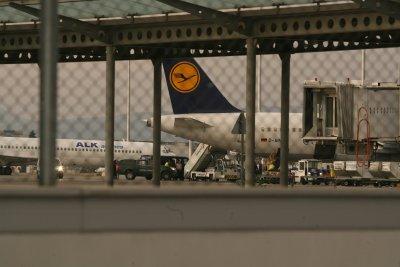 Луфтханза подновява полети до 20 дестинации от средата на юни