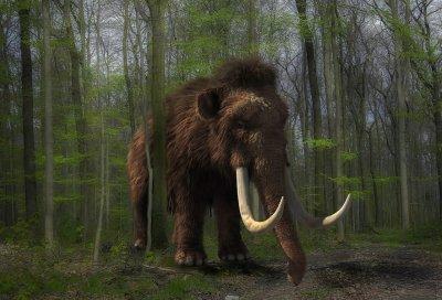 #60 секунди без COVID-19: Откриха останки на над 60 мамута край Мексико