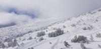 Слънце и зимни емоции на Боровец днес