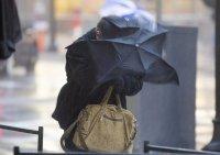 Ветровито и с валежи днес