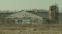 Няма нови огнища на птичи грип край Раковски