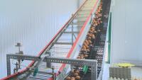 Как работят фермите в извънредно положение