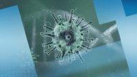 458 са потвърдените случаи на коронавирус у нас