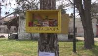 Младежи поставиха кутия с храна за нуждаещи се на дърво в Черноморец