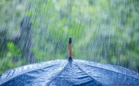 Проливни валежи и силен вятър на много места в страната