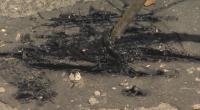 Санкция за фирмата и проблеми за шофьорите след некачествен ремонт на бул. Дондуков