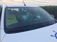 Заловиха бракониерите в Бургас, които потрошиха автомобил на ИАРА