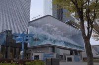 Вълнуваща 3D вълна в Сеул връща усещането за живот